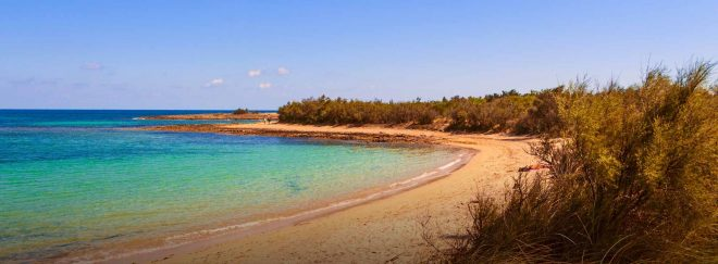 torre-guaceto-spiaggia